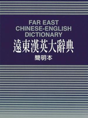 遠東漢英大辭典(簡明本)聖經紙